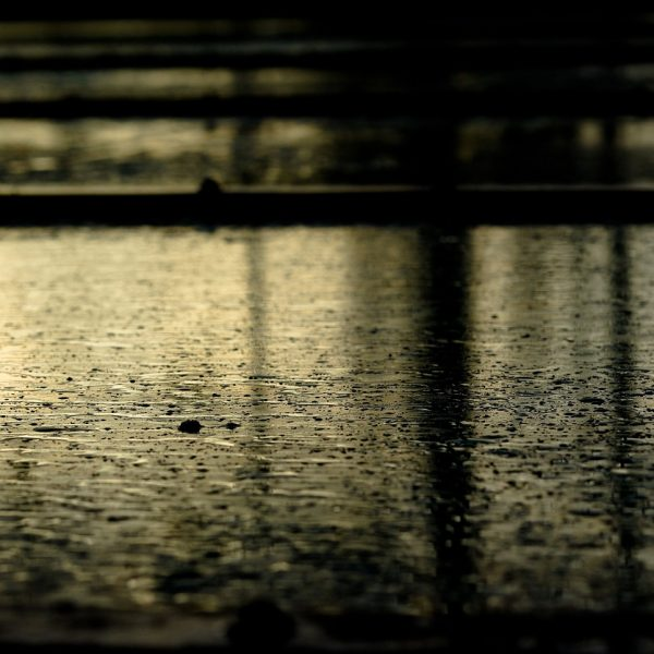 rain falling on pavement